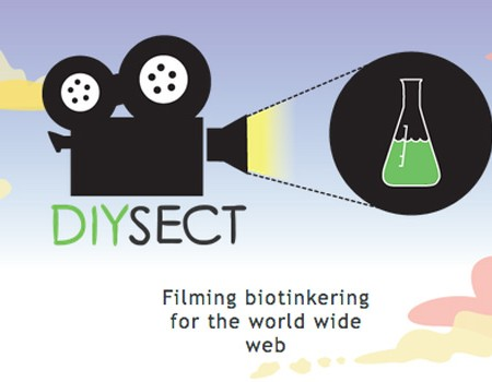 DIYsect