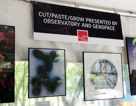 CUT/PASET/GROW at World Science Festival's Innovation Square